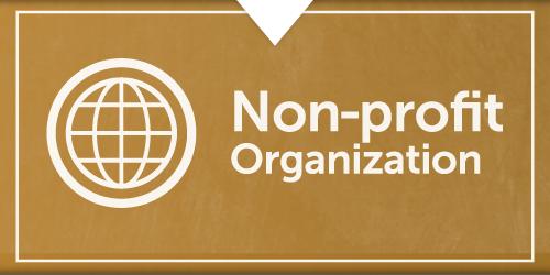 Non-profit organization consulting